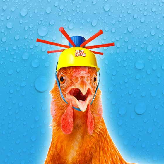TF1 Games et Wet Head - Campagne de communication par Sharing Agency