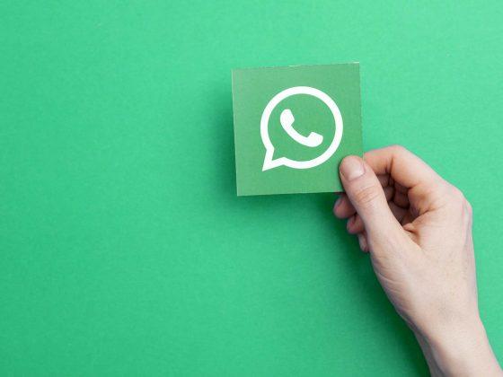 WhatsApp sur MacOS et Windows - les tests ouverts au public